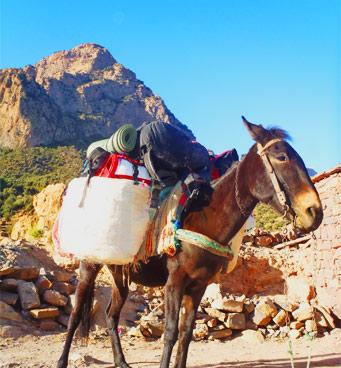 Viaje barranquismo en Marruecos en los barrancos del Atlas con Expediciones-sc.es